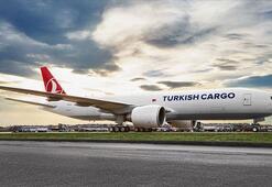 Dünyada taşınan 20 hava kargodan 1i Turkish Cargodanoldu