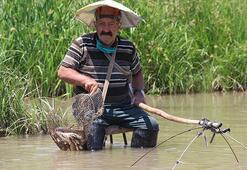 71 yaşındaki adamın Kızılırmak'ta balık tutma yöntemi şaşkına çevirdi