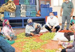 'İşimiz gücümüz tarım'