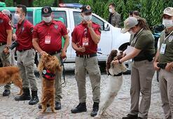 Hayvan polisleri hafta sonu 81 ilde göreve başlayacak