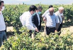 'Çiftçinin borçlarını yapılandırmalıyız'