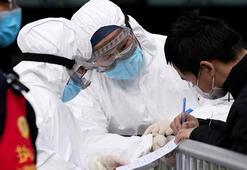 Son dakika: Sıfırlanmıyor... İki ülkede yeni koronavirüs vakaları