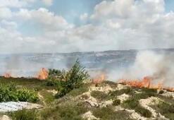 Tuzlada otluk alanda yangın