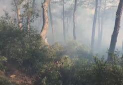 Heybeliadada korkutan orman yangını