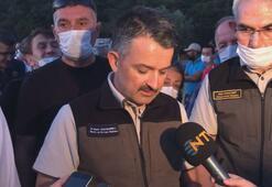 Bakan Pakdemirliden Heybeliada yangını açıklaması