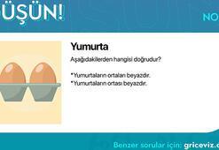 Günün bulmacası: Yumurta
