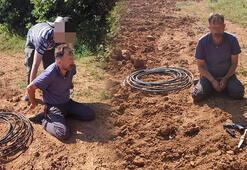 20 yıl kesinleşmiş cezası bulunan şahıs tarlada kenevir sularken yakalandı
