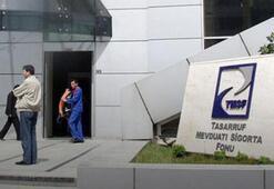 TMSF'ye devredilen  şirketler büyüdü