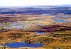 Tundra İklimi Nedir, Nerelerde Görülür Tundra İkliminin Özellikleri Nelerdir
