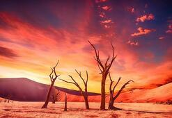 Çöl İklimi Nedir, Nerelerde Görülür Çöl İkliminin Özellikleri Nelerdir