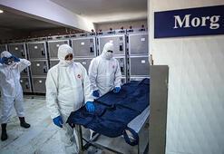 Son dakika... Bakan Koca corona virüs için yeni önlemleri açıkladı