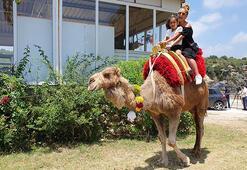 Cennet- Cehennem obruklarını ziyaret edenlerin deve turukeyfi