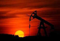 Libya Petrol Kurumu: Zarar 7 milyar dolardan fazla