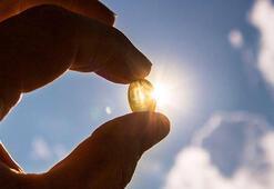 D vitamini alabileceğiniz besinler neler