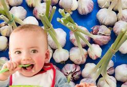 Bebeğe sarımsak kaçıncı ayda verilir - Bebekler hangi sebze ve meyveleri yiyebilir