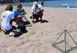 İztuzu Plajında caretta caretta yuvası sayısı 661e ulaştı