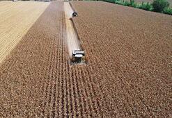 Tarımsal Girdi Fiyat Endeksi mayısta arttı
