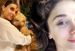 Pınar Gültekin cinayetinde son dakika gelişmesi: Caniyi pet şişe ele verdi
