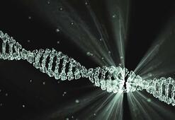 Dna Ve Genetik Kod - Örnek Sorular İle Konu Anlatımı