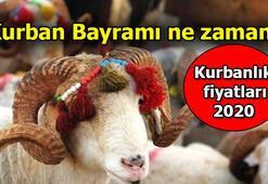 Bayramda sokağa çıkma yasağı olacak mı Bakan Fahrettin Koca açıkladı - 2020 Kurban Bayramı tarihleri ve Kurbanlık fiyatları