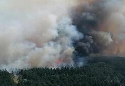 Edirnede orman yangını Ekipler oraya koştu