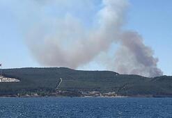 Son dakika... Çanakkalede 5 ayrı noktada çıkan orman yangını kontrol altına alındı