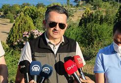 Tarım ve Orman Bakanı Pakdemirli: Tüm yangınların hepsi kontrol altında
