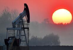 Petrolün varili 43,69 dolar