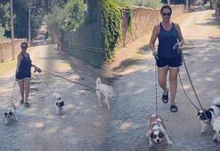 Hülya Avşarın köpekleriyle mücadelesi