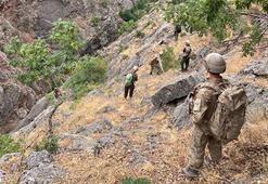 Son dakika İçişleri Bakanlığı açıkladı: Yıldırım - 4 Munzur - Kutu operasyonu başladı