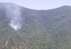 Hatayda çıkan orman yangını kontrol altına alındı
