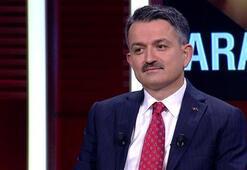 Son dakika... Bakan Pakdemirli CNN TÜRKte açıkladı: Mısır alım fiyatı belli oldu