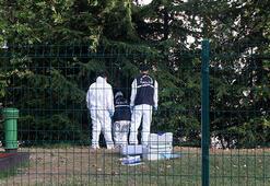 İstanbulda korkunç olay Ağaca asılı erkek cesedi bulundu