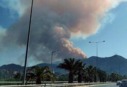 Son dakika... İzmirden peş peşe yangın haberleri