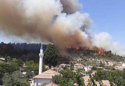 İzmirin Menderes ilçesinde orman yangını çıktı