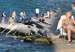 Büyükadada vatandaşların ücretli plaj tepkisi Kayalıklardan denize giriyoruz