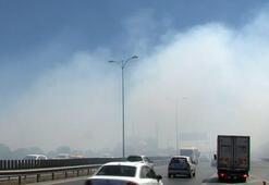 Son dakika... Bayrampaşa'da yol kenarında yangın Göz gözü görmedi