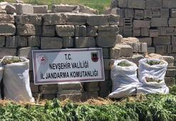 Nevşehir'de 12 kilogram esrar ele geçirildi 3 kişi gözaltına alındı