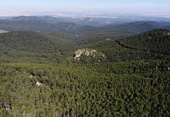Türkmen Dağı ekoturizme kazandırılıyor