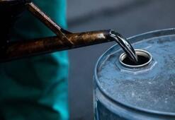 ABDnin ham petrol üretiminde 40 yılın en büyük aylık düşüşü