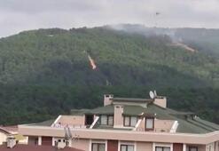 Son dakika... İstanbulda orman yangını Bakandan açıklama