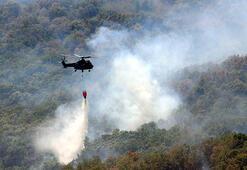 Bulgaristan sınırındaki orman yangını etkisini kaybediyor