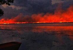 Samsunda sazlık alanda başlayan yangın ormana sıçradı