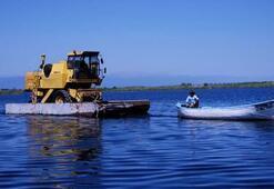 Beyşehir Gölü üzerinde biçerdöver taşıdılar