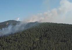 Son dakika... Aydos Ormanında yangını kontrol altına alındı