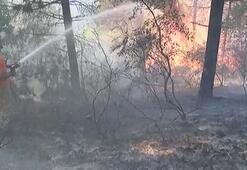 Aydos Ormanında 4 farklı noktada yangın çıktı