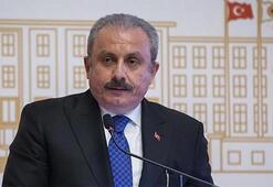 TBMM Başkanı Şentoptan Doğu Akdeniz tepkisi