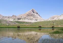 Doğa tutkunlarının uğrak adresi: Kepır Gölü