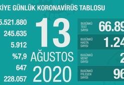 Türkiyenin günlük corona virüs tablosu (13 Ağustos 2020)