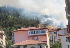 Son dakika... Ankarada orman yangını